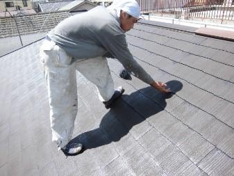 屋根塗装 イメージ
